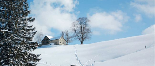 Skitourentage in Batschuns mit meditativen Impulsen