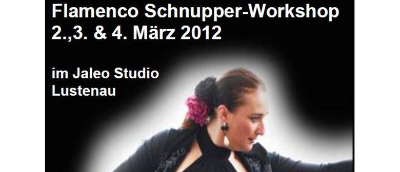 Flamenco Schnupperworkshop - Kostenlos!