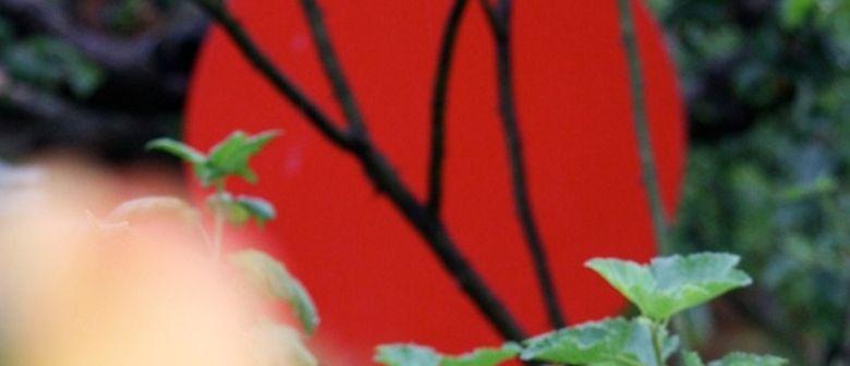 aktuelle kunst in graz: GALERIENTAGE 2012