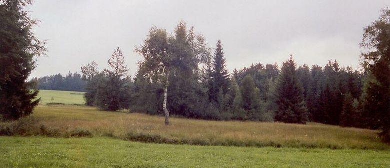 Biotopexkursion in Langenegg: Hochmoore beim Rotenberg