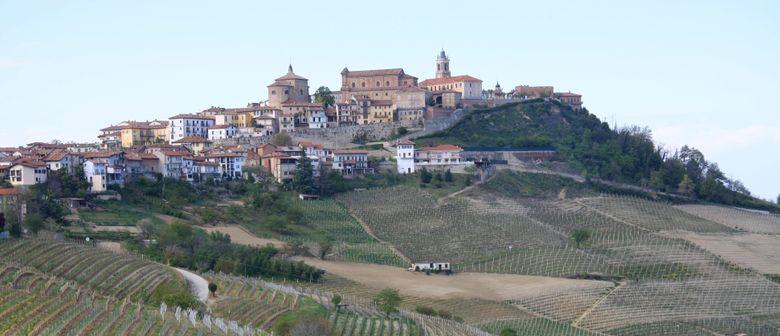 Wein & Kochen – Spitzenweine aus dem Piemont