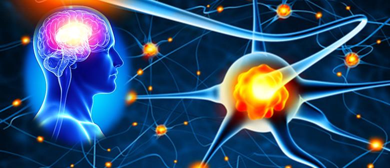 Die Heilkraft im Zellbewusstsein