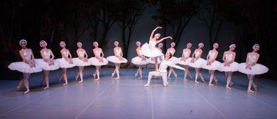 Schwanensee | St. Petersburg Festival Ballet