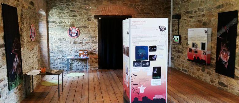 Fledermaus-Ausstellung auf Burg Lockenhaus