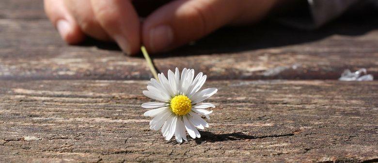 Blütenduft und Frühlingsluft