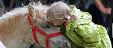 Tierausstellung auf Luisl's Farm in Höchst