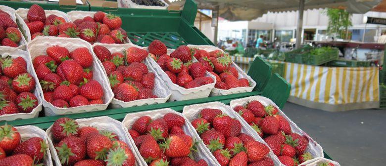 Erdbeeraktion am Luschnouar Markt
