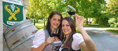 Mödlinger Weinfest