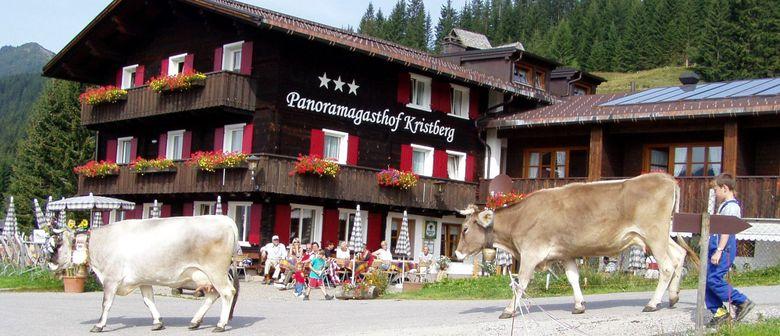 Almabtrieb der Alpe Wasserstube