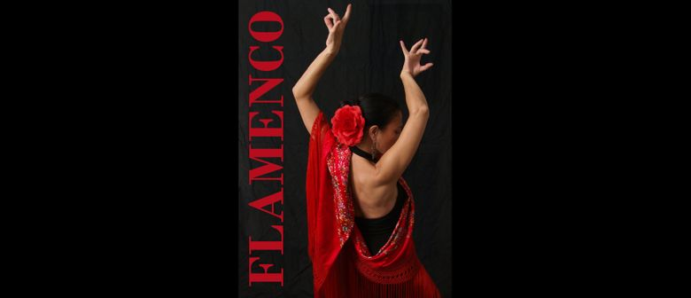 Flamenco-Tanzkurse in Bad Vöslau