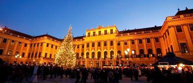 Kultur- und Weihnachtsmarkt & Neujahrsmarkt Schloss Schönbru