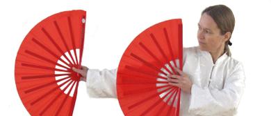 Taiji Quan Seminare Fächer und Schwert