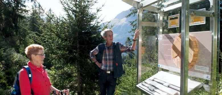 "Bergerlebnis: Silberpfad am Kristberg – ""Weg der Erkenntnis"""