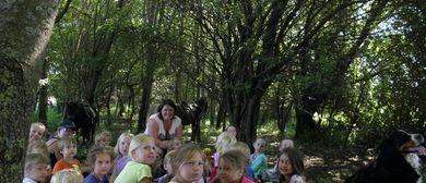 Reitspaß im Wald4rtel – Heidenreichstein