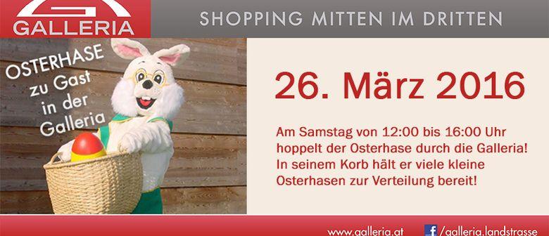 Der OSTERHASE kommt in die Galleria!