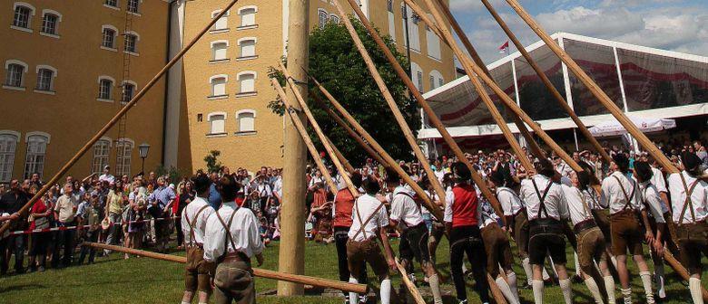 Großes Stiegl-Maibaumfest