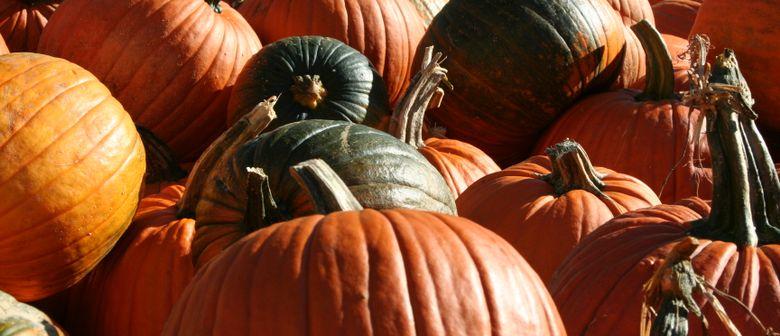Dornbirner Herbst - Kürbisschnitzen und Kürbisprämierung