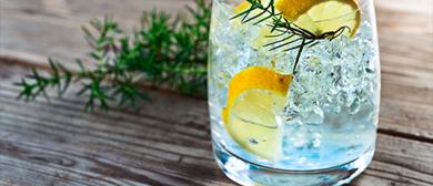Gin ABC bei WEIN  & CO