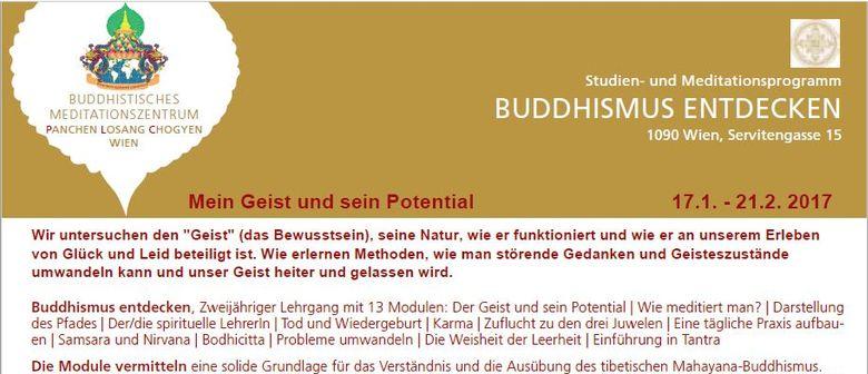 """Neustart von """"Buddhismus entdecken"""""""