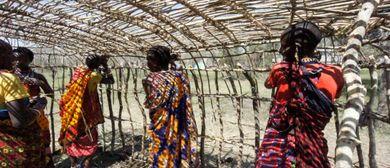 Maasai Baumeisterinnen aus Ololosokwa