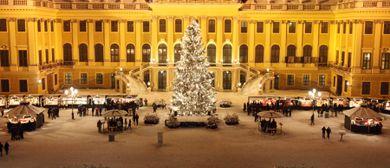 Kultur- und Weihnachtsmarkt Schloß Schönbrunn