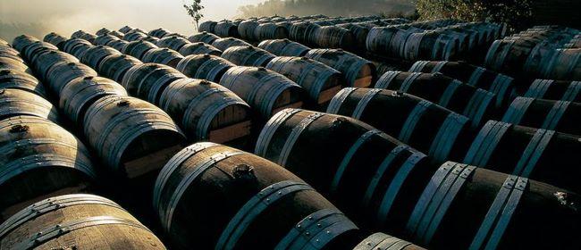 Wein ABC Rund um die Welt bei WEIN & CO
