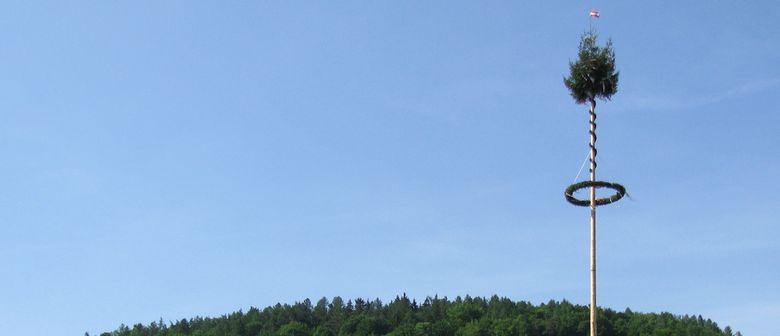 Schwerbacher Maibaumsteigen