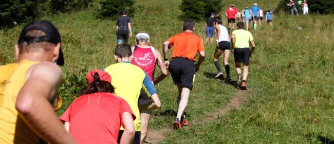 Arlberg läuft - Höhenhalbmarathon