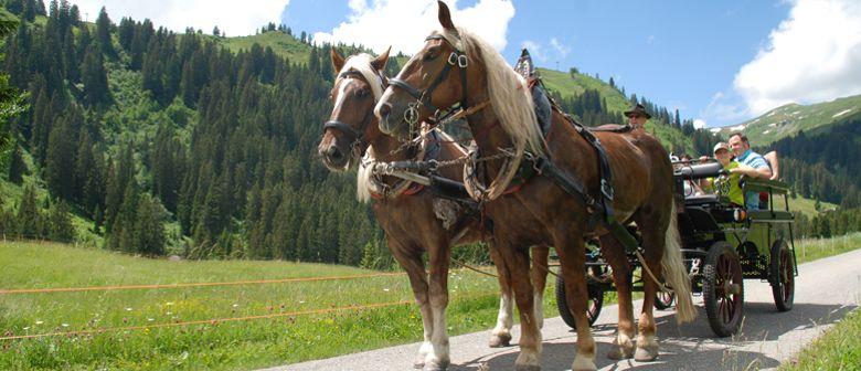 Pferdekutschenfahrt in Damüls