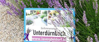 Lavendel-Wein-Fest