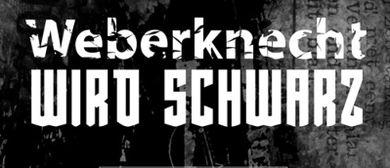 Weberknecht wird schwarz