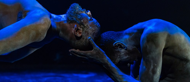 tanz ist Festival: Compagnie 7273 (CH/F), Laurence Yadi – TO