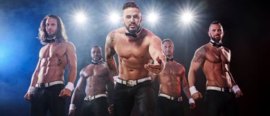 THE CHIPPENDALES about last night tour