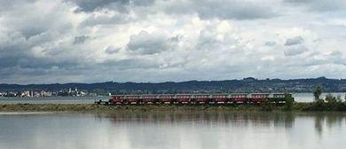 Rheinmündungsfahrt und Exkursion