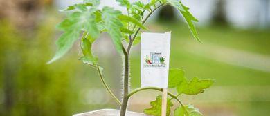 Bio-Jungpflanzenverkauf