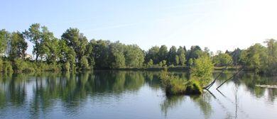 Schönheit ist nicht planbar - Ein Fluss erzählt