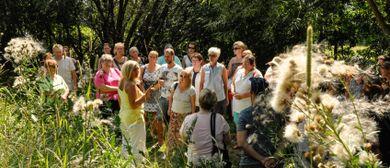 Gartensommer-Kräutertag mit Eunike Grahofer