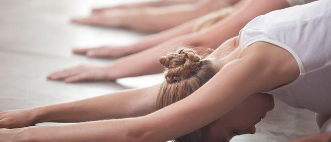 YIN YOGA - Yogalehrer Basis Ausbildung