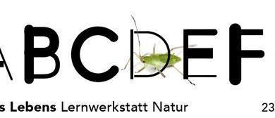 Alphabet des Lebens - Lernwerkstatt Natur