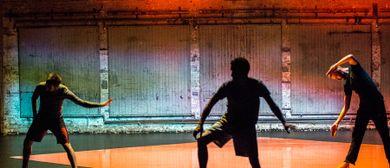 ImPulsTanz 2018: Salva Sanchis – Radical Light