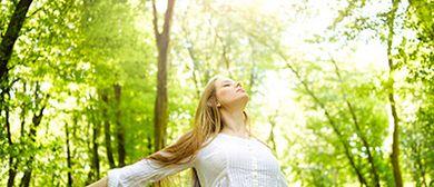 Chakraseminar - Nutze die Kraft deiner Energiezentren!