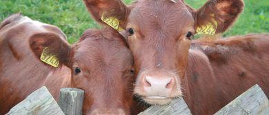 Infoabend zur EU-Agrarpolitik