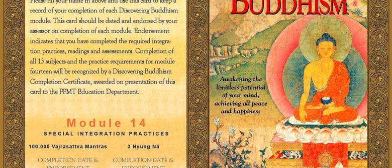 Buddhismus entdecken