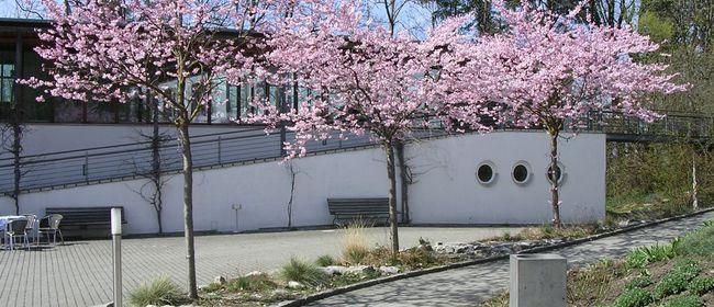Frühlingsaufbruch