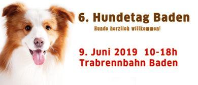 Hundetag Baden 2019