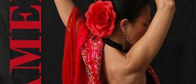 Flamenco-Tanzkurse mit Maria Luisa aus Sevilla