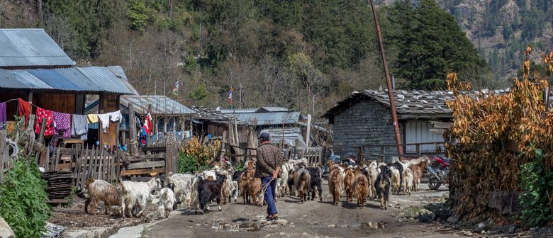 Benefizvortrag: Nepal