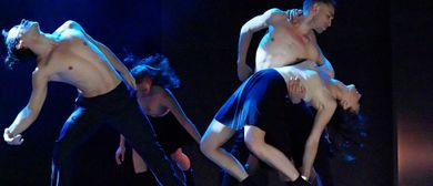 Pädagogische Fortbildung - Modern Dance