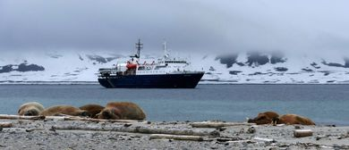 SPITZBERGEN - Auf der Suche nach Eisbären