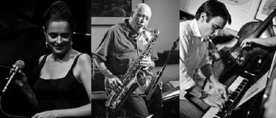 Heinz von Hermann Quartet feat. Anna Lauvergnac